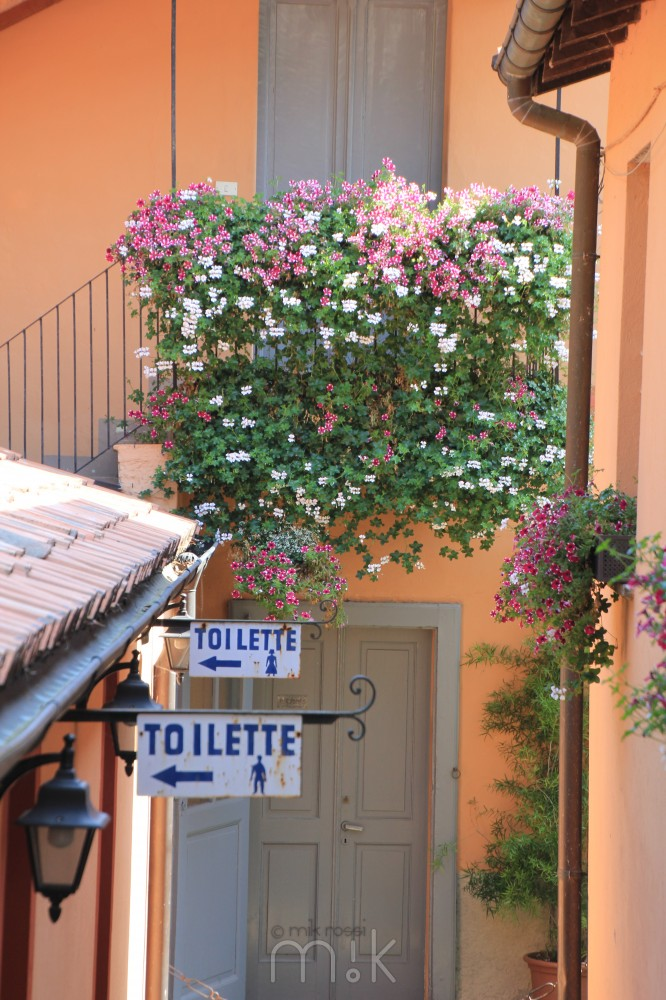 Flowers and toilets - Italy